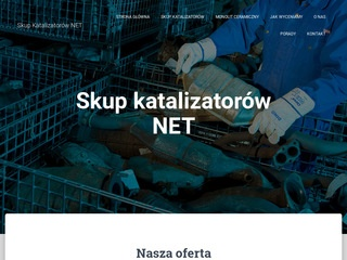 Skupkatalizatorow.net